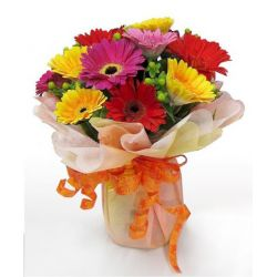 12 Mixed Color Gerberas