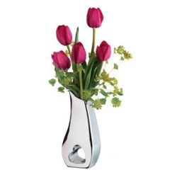 5 Stems Tulips with Free Glass Vase