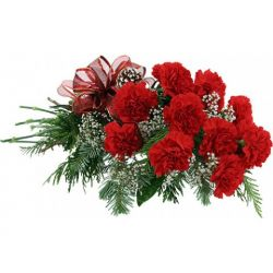 12 Red Carnation in a Bouquet