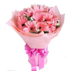 12 Pink Gerbera in a Bouquet