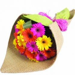 12 Mixed Color Gerberas in a Bouquet