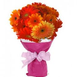 10pcs. Mixed Color Gerberas in a Bouquet
