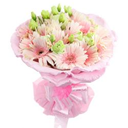 12 Pink Gerberas in a Beautiful Bouquet