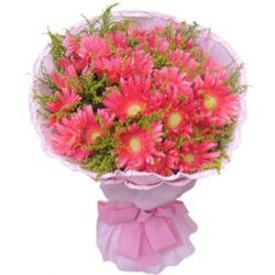 12 Pink Gerberas in a Bouquet