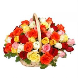 48 Mixed Color Roses in Basket