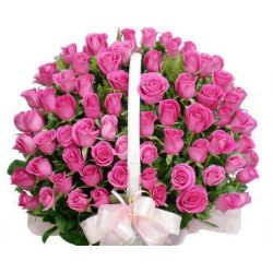60 Pink Roses in Basket