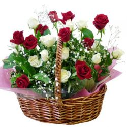 24 Red and White Roses in Basket