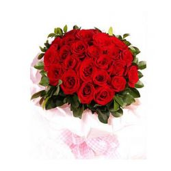 24 Red Roses in Bouquet.