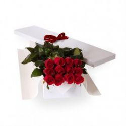 ​12 Red Roses in a Box