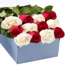 12 Red and White Roses in a Box