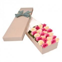 ​24 Pink and White Color Roses in a Box