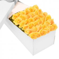 ​36 Yellow Roses in a Box