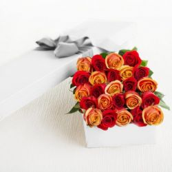 ​24 Mixed Color Roses in a Box