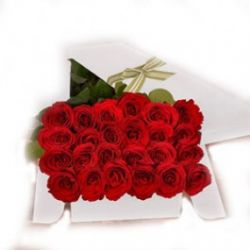 ​24 Red Roses in a Box