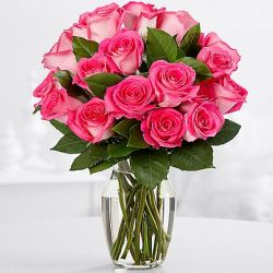 12 Pink Roses with Free Vase