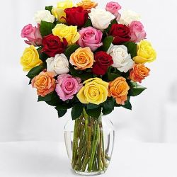 ​24 Mixed Color Roses With Free Vase