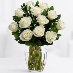 12 White Roses with Greenery in Free Vase