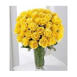 24 Yellow Roses with Free Vase