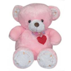​Regular Size Pink Teddy Bear