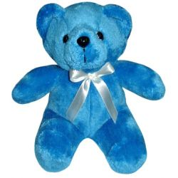 ​Regular Size Blue Color Teddy Bear