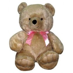 ​Regular Size Brown Teddy Bear