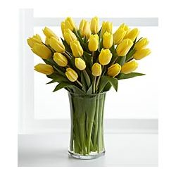 24 Yellow Tulips with Free Vase