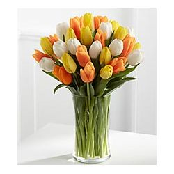 24 Mixed Color Tulips with Free Vase