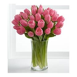 24 Pink Tulips with Free Vase