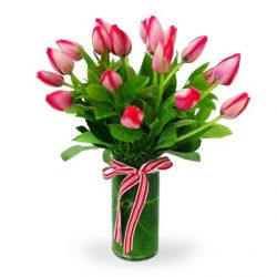 18 Pink Tulips with Free Vase