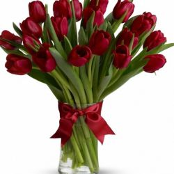 20 Red Tulips with Free Vase