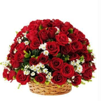 48 Red Roses in Basket