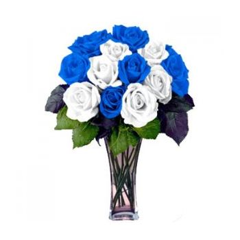 ​12 Blue and White Color Roses with Free Vase