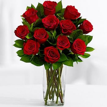 12 Red Roses with Free Vase